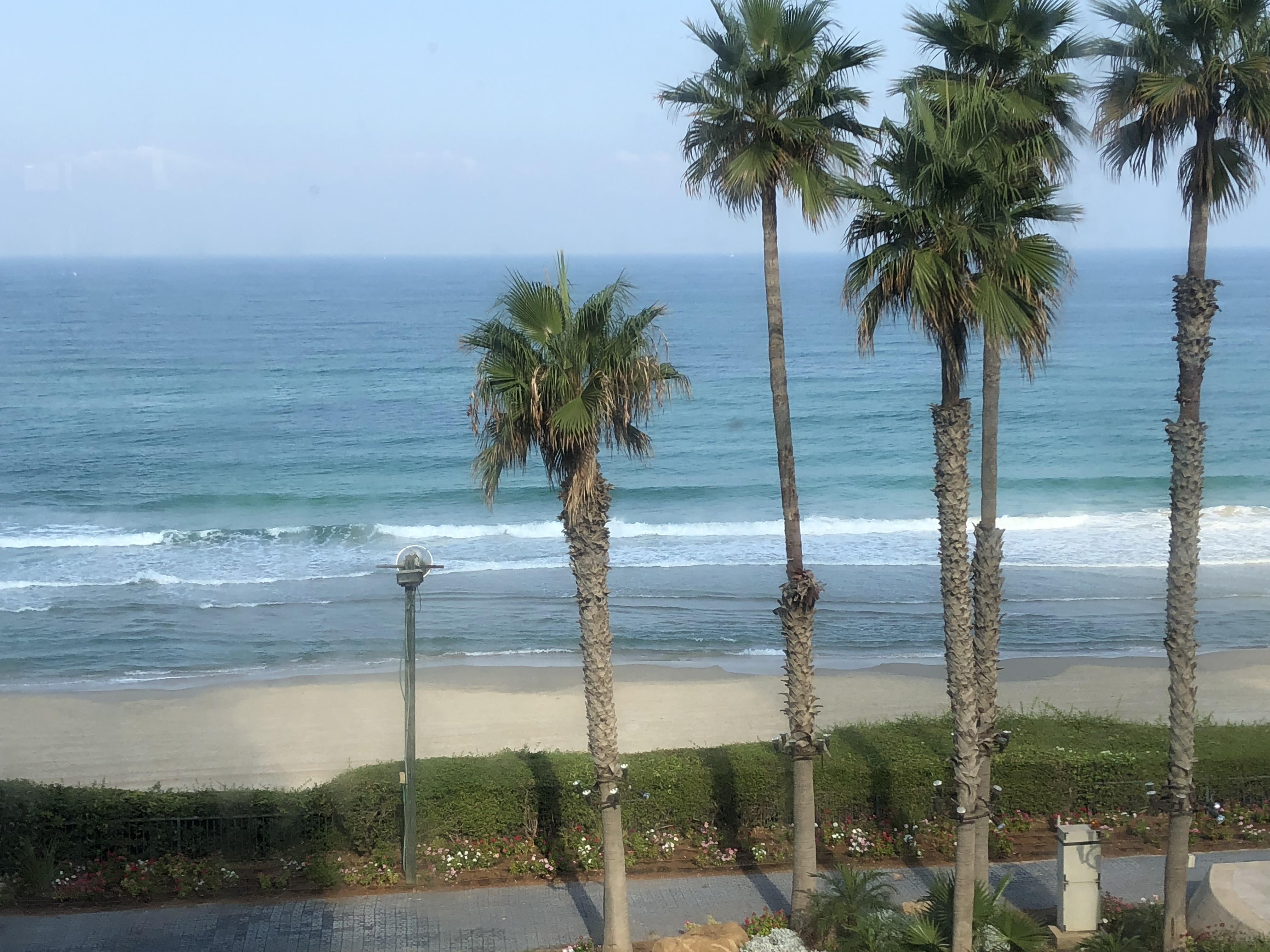 חוף הים מלון דניאל קרדיט זאב ליאק